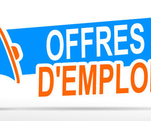 APPEL À CANDIDATURE POUR LE RECRUTEMENT DES STAFFS DU DROP IN CENTER (DIC)  DE BAMENDA ET NGAOUNDERE
